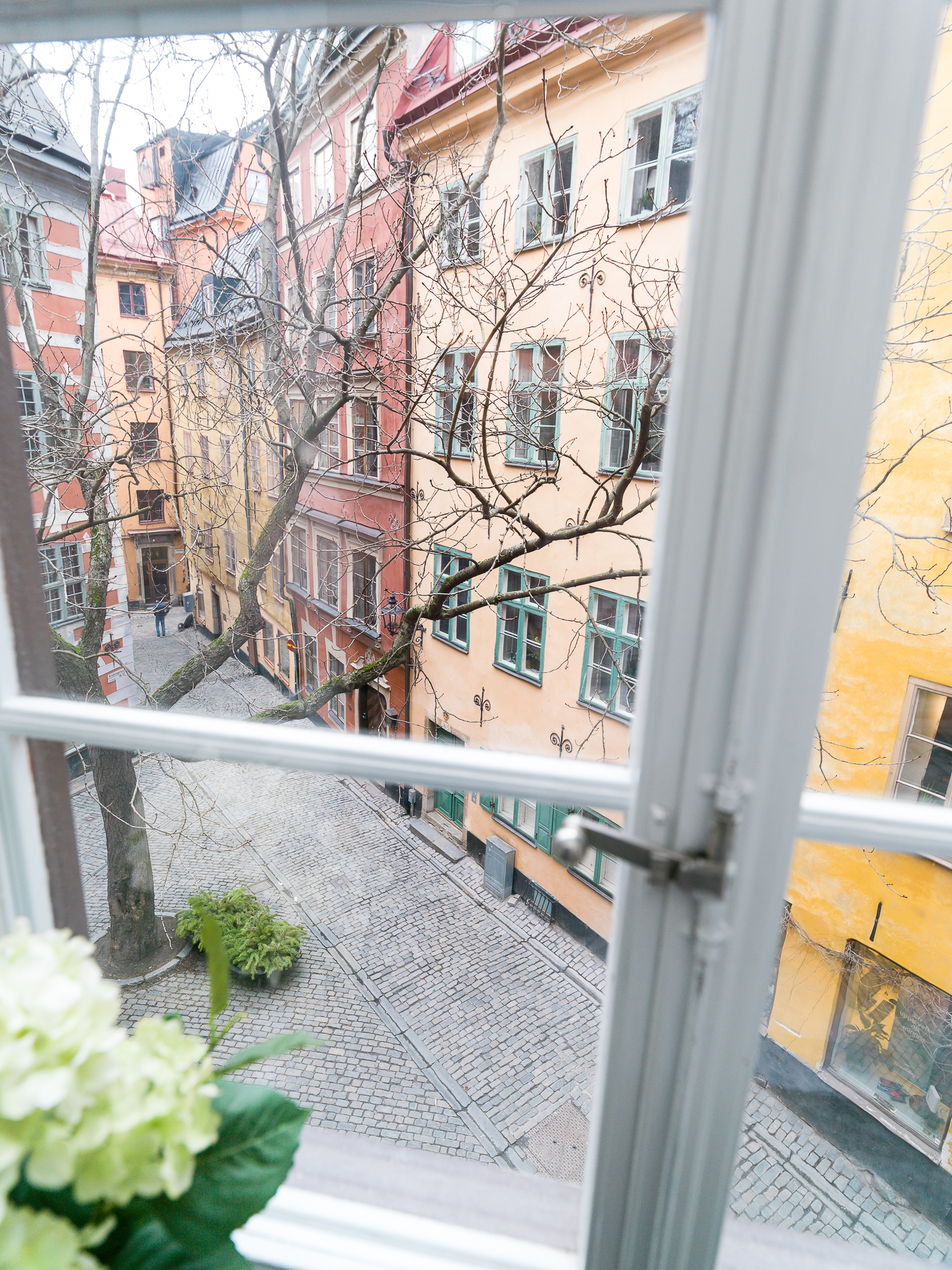 Window-HBL12644